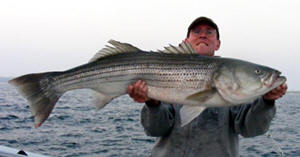 Rhode Island Fishing Charters List of Fishing Guides for Point